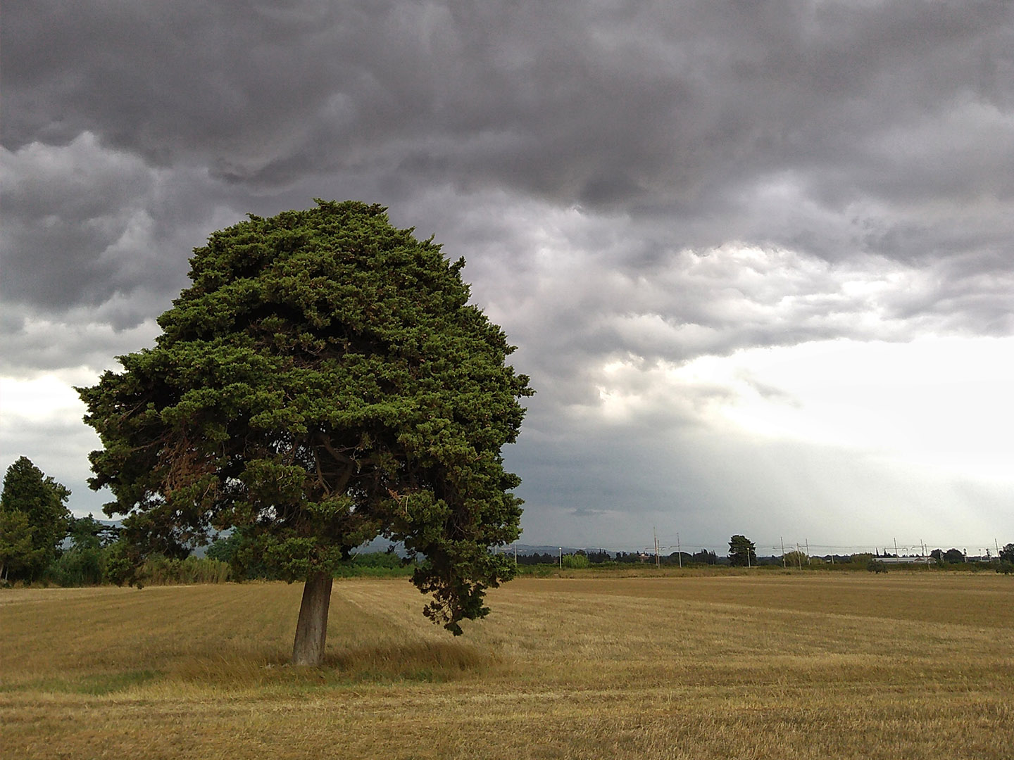 Categorie: Landscape & Nature; Photographer: FRANCO GRONCHI; Location: Vada, LI, Toscana, Italy - Waiting for the storm